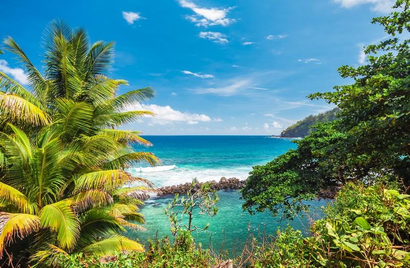 Comment réserver sa voiture de location à la Réunion ?
